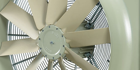 First Compact Fan