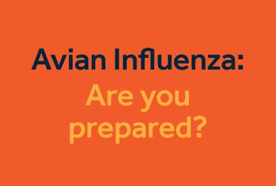 avian influenza: are you prepared?